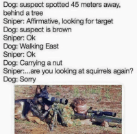 sniper: Dog: suspect spotted 45 meters away,  behind a tree  Sniper: Affirmative, looking for target  Dog: suspect is brown  Sniper: Ok  Dog: Walking East  Sniper: Ok  Dog: Carrying a nut  Sniper  are you looking at squirrels again?  Dog: Sorry