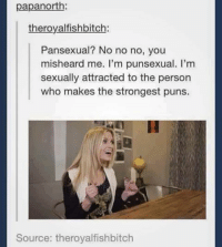pansexual: papanorth  theroy alfishbitch:  Pansexual? No no no, you  misheard me. I'm punsexual. I'm  sexually attracted to the person  who makes the strongest puns.  Source: theroyalfishbitch