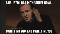 Roger Goodell be like...: CAM,IF YOU DABIN THE SUPER BOWL  @NFL MEMES  I WILL FIND  YOU, ANDIWILL FINE YOU Roger Goodell be like...