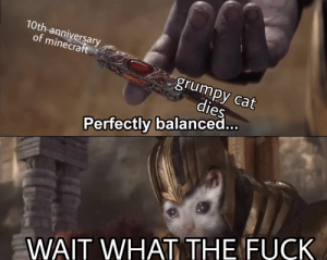 Minecraft, Grumpy Cat, and Fuck: 10th-anniversary,  of minecraft  grumpy cat  dies  Perfectly balanced  WAIT WHAT THE FUCK TODAY WAS SUPPOSED TO BE HAPPY
