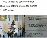 Not Voting: 11,000 Voters: yo pass the ballot  USA: you better not vote for memes  11,000 Voters:  O 7B CATHERINE (CAT) PIN  REPUBLICAN PARTY  P 7C DREW THOMPSON  LIBERTARIAN PARTY  TE  HaRam be  Write-in
