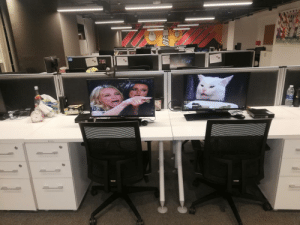 At work, they take Screensavers very seriously.: 11:06  HA At work, they take Screensavers very seriously.