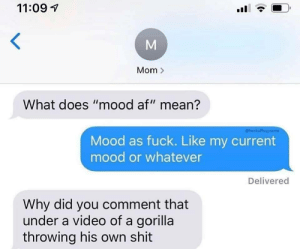 "Af, Dank, and Memes: 11:09  Mom>  What does ""mood af"" mean?  @heckoffsupreme  Mood as fuck. Like my current  mood or whatever  Delivered  Why did you comment that  under a video of a gorilla  throwing his own shit  M meirl by hanswurst7 MORE MEMES"