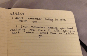Love, Target, and Tumblr: 11/12/14  1 don'+ remember alling in love.  witnyou  1 jnst remember holding your hand  h it was goina to  hurt whenI would hare to ietit  realizing how muc  9o. remanence-of-love:  Realising how much it was going to hurt…