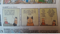 """How To, Jobs, and Mean: 11-22  DILBERT Scott Adams  YOU  MEAN NEED THE  THE SMART ONES  NO, WE  THE JOB MARKET  IS SO TIGHT WE  CANT FIND ANY  PROGRAMMERS.  SO I WANT YOU TO  TEACH SOME OF OUR  EMPLOYEES HOW TO  CODE  1  SMART İN THEIR  ONES, CURRENT  I HOPE  JOBS  BLONDIE Dean Young & John Marshall  I ALREADY  (YES, DEAR  IT'S SUPPOSED TO BE MORE 