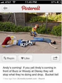 Memes, 🤖, and Media: 11:45 PM  37%  AT&T  Dinterest  Repin w Like  Andy's coming! If you yell Andy's coming in  front of Buzz or Woody at Disney they will  stop what they're doing and drop. Bucket list!  1 hour ago from 25.media.tumblr.com. Report This HAS to be done!
