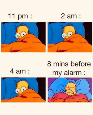 meirl: 11 pm  2 am:  8 mins before  my alarm  4 am meirl