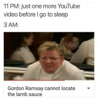 Go to Sleep, Gordon Ramsay, and Tumblr: 11 PM: just one more YouTube  video before I go to sleep  3 AM  Gordon Ramsay cannot locate  the lamb sauce I was just talking to my cat and my brother walked into the room and I want to say I'm embarrassed but I do it all the time ~ Kay
