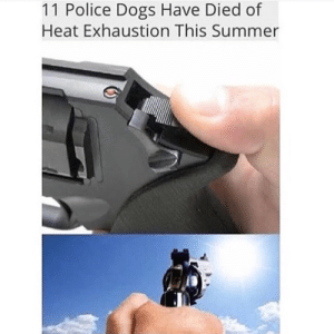 Dank, Dogs, and Memes: 11 Police Dogs Have Died of  Heat Exhaustion This Summer Shut it down by georgewho__ FOLLOW HERE 4 MORE MEMES.