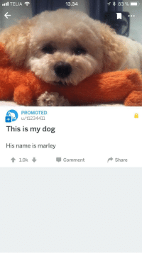 Reddit, Wholesome, and Dog: '11 TELIA  13.34  83 % .  PROMOTED  u/t1234411  This is my dog  His name is marley  會1.0k  Comment  Share <p>Wholesome reddit promotion</p>