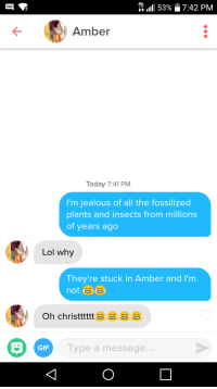 Gif, Jealous, and Lol: 1111 53%  7:42 PM  Amber  Today 7:41 PM  I'm jealous of all the fossilized  plants and insects from millions  of years ago  Lol why  They're stuck in Amber and I'm  Oh christttt  GIF  Type a message.. Im somewhat of an archeologist myself