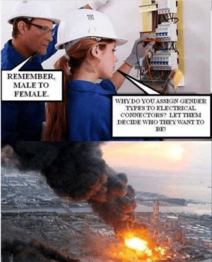 I bet they wanted to be attack helicopters: 1111  REMEMBER,  MALE TO  FEMALE  WHY DO YOU ASSIGN GENDER  TYPES TO ELECTRICAL  CONNECTORS? LET THEM  DECIDE WHO THEY WANT To  BE! I bet they wanted to be attack helicopters