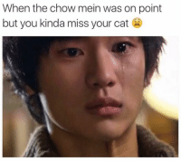 I'll just leave this here. Like Dank Memes page for more.: When the chow mein was on point  but you kinda miss your cat I'll just leave this here. Like Dank Memes page for more.