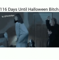 Bitch, Funny, and Halloween: 116 Days Until Halloween Bitch  Ig:@hoodclips Bruhhh hoe is life lol