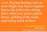 """Target, Tumblr, and Http: 1170. Having healing cuts on  your thighs can turn a regular  trip to the toilet into sitting  there with your pants pulled  down, picking at the scabs  and losing track of time  Dermatilomania &  selfinjury  tatteredsanity.tumblr.com <p>submitted by<a href=""""http://ah0y-jessica.tumblr.com/"""" target=""""_blank"""">ah0y-jessica</a></p>"""