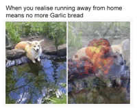 run away: When you realise running away from home  means no more Garlic bread  facebook garlicbreadmennes  @gbmemes