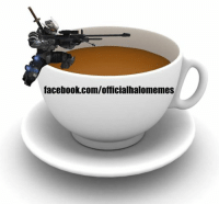 This is either the best pun ever...or the worst -Oddball: facebook.com/officialhalomemes This is either the best pun ever...or the worst -Oddball