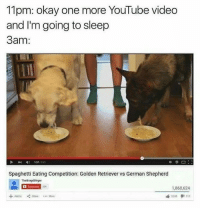 Bailey Jay, youtube.com, and German Shepherd: 11pm: okay one more YouTube video  and I'm going to sleep  3am:  P157/241  Spaghetti Eating Competition: Golden Retriever vs German Shepherd  TheBragdBirger  200  1.860,624  曲3,249タ1113  + Add to Share More