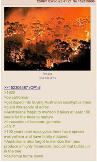 (GC): 12/06/17(Wed)22:41:21 No.152315696  fire.jpg  364 KB JPG  2152305387 (OP) #  >1920  >be californian  get duped into buying Australian eucalyptus trees  plant thousands of acres  >Australians forget to mention it takes at least 100  years for the trees to mature  thousands of investors go broke  >2017  >100 years later eucalyptus trees have spread  everywhere and have finally matured  >Australians also forgot to mention the trees  produce a highly flammable toxic oil that builds up  in the tree  california burns down (GC)
