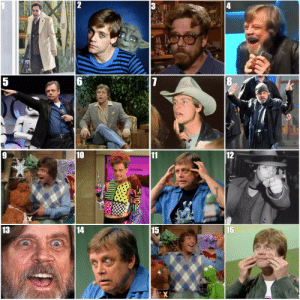 probablyhumanrpgideas: jedihighcouncil: which mark hamill are u today  These images convey emotions my mind is not equipped to handle : 12  10  15  16  13  14 probablyhumanrpgideas: jedihighcouncil: which mark hamill are u today  These images convey emotions my mind is not equipped to handle