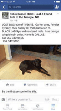 STILL MISSING DALLAS!: 12:51 PM  Search  Robin Russell Held Lost & Found  Pets of the Triangle, NC  1 hr  LOST DOG eve of 11/26/16, Garner area, Pender  nyrsery, rock quarry rd, mial plantation rd.  BLACK LAB 9yrs old neutered male. Has orange  w/ gold coin collar. Name is DALLAS-  call 252 342 0405  252 342 5190  Lae comment Share  Be the first person to like this.  Od Write a comment. STILL MISSING DALLAS!