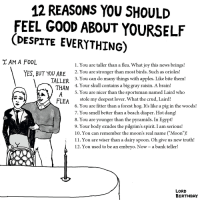 """Birthday, News, and Smell: 12 REASONS YOU SHOULID  FEEL GOOD ABOUT YOURSELF  (DESPITE EVERYTHING  TAM A F00L  1. You are taller than a flea. What joy this news brings!  YES, BUT YOU ARE 2.You are stronger than most birds. Such as orioles!  TALLER  THAN  3. You can do many things with apples. Like bite theml  4. Your skull contains a big gray raisin. A brain!  5. You are nicer than the sportsman named Laird who  CFLEA  stole my deepest lover. What the crud, Lair  6. You are fitter than a forest hog. It's like a pig in the woods!  7. You smell better than a beach diaper. Hot dang!  8. You are younger than the pyramids. In Egypt!  9. Your body exudes the pilgrim's spirit. I am serious!  10. You can remember the moon's real name (""""Moon"""")!  11. You are wiser than a dairy spoon. Oh give us new truth!  12. You used to be an embryo. Now- a bank teller!  LORD  BIRTHDAY"""