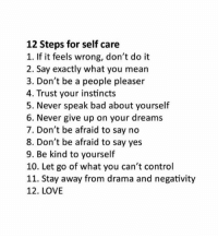 Bad, Love, and Control: 12 Steps for self care  1. If it feels wrong, don't do it  2. Say exactly what you mean  3. Don't be a people pleaser  4. Trust your instincts  5. Never speak bad about yourself  6. Never give up on your dreams  7. Don't be afraid to say no  8. Don't be afraid to say yes  9. Be kind to yourself  10. Let go of what you can't control  11. Stay away from drama and negativity  12. LOVE