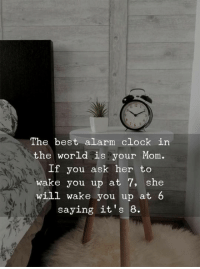 Clock In: 12  The best alarm clock in  the world is your Mom.  If you ask her to  wake you up at 7, she  will wake you up at  saying it's 8.