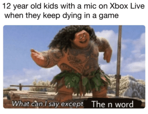 Obama, Xbox Live, and Xbox: 12 year old kids with a mic on Xbox Live  when they keep dying in a game  The n word  What can l say except Ms Obama get down