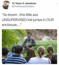 """Dicks out: 12 Years A Jamaican  @TheHoustonAstro  """"So boom...this little ass  UNSUPERVISED kid jumps in OUR  enclosure..."""" Dicks out"""