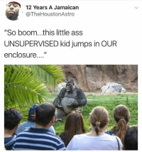 "Ass, Dank Memes, and Boom: 12 Years A Jamaican  @TheHoustonAstroo  ""So boom...this little ass  UNSUPERVISED kid jumps in OUR  enclosure..."" Harambe did nothing wrong"