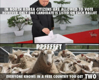 Korea Meme: IN NORTH KOREA CITIZENS ARE ALLOWED TO VOTE  OWEVER ONLY ONE CANDIDATE IS LISTED ON EACH BALLOT  PPFFFFFT  EVERYONE KNOws IN A FREE coUNTRY YOU GET TWO