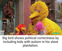 Sesame Street: 123  SESAME STREET  Big bird shows political correctness by  including kids with autism in his slave  plantation