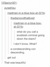 27 Of The Best Puns Ever On Tumblr: 123jaclyn321  zurashisu:  madman-in-a-blue-box-at-221b:  thediamondthatlived:  madman-in-a-blue-box-  at-221b:  what do you call a  snobbish criminal going  down the stairs?  I don't know. What?  a condescending con  descending.  get out  That was beautiful 27 Of The Best Puns Ever On Tumblr