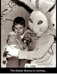 Easter, Bunny, and Easter Bunny: 1292  The Easter Bunny is coming.. MOMMY?!?