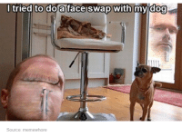 - Pip: I tried to do a face swap with my dog  Source: memewhore - Pip