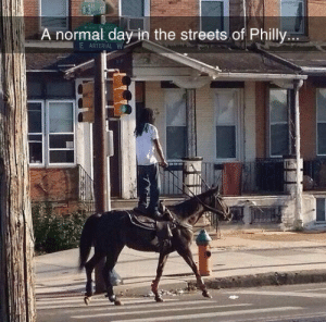 srsfunny:  The Streets Of Philly: 13  A normal day in the streets.of Philly...  E ARTERIAL W srsfunny:  The Streets Of Philly