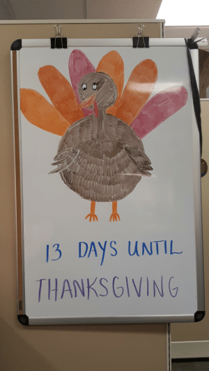 Turkey time is upon us: 13 DAYS UNTIL  THANKSGIVING  BOARD Turkey time is upon us