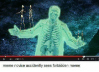 accidently: 1309  meme novice accidently sees forbidden meme