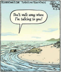 Evolved fish doesn't have to put up with your shit --Colby: ZARROCOMICS.COM Facebook.com/BizarroComics  Don't walk away when  I'm talking to you!  4.3 Evolved fish doesn't have to put up with your shit --Colby