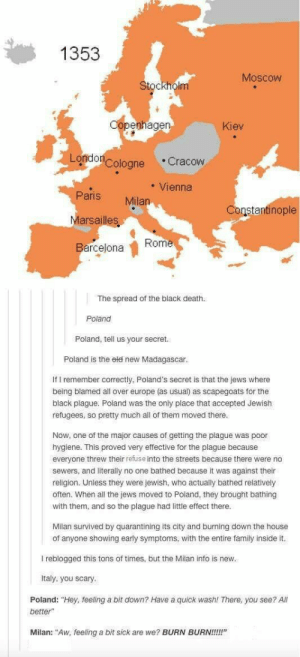"""The plague: 1353  Moscow  Stockholm  penhage  Kiev  Londo  Cologne Cracow  Vienna  Paris Milan  Marsailles  Barcejona  Constantinople  Rome  The spread of the black death.  Poland  Poland, tell us your secret.  Poland is the eld neW Madagascar  If I remember correctly, Poland's secret is that the jews where  being blamed all over europe (as usual) as scapegoats for the  black plague. Poland was the only place that accepted Jewish  refugees, so pretty much all of them moved there  Now, one of the major causes of getting the plague was poor  hygiene. This proved very effective for the plague because  everyone threw their refuse into the streets because there were no  sewers, and literally no one bathed because it was against their  religion. Unless they were Jewish, who actually bathed relatively  often. When all the jews moved to Poland, they brought bathing  with them, and so the plague had little effect there  Milan survived by quarantining its city and burning down the house  of anyone showing early symptoms, with the entire family inside it.  I reblogged this tons of times, but the Milan info is new  Italy, you scary  Poland: """"Hey, feeling a bit down? Have a quick wash! There, you see? All  better""""  Milan: """"Aw, feeling a bit sick are we? BURN BURN!!!!"""" The plague"""