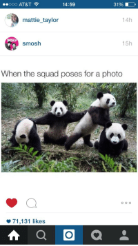 """Squad, Tumblr, and Blog: 14:59  31%  mattie_taylor  14h  smosh  15h  When the squad poses for a photo  φ 71,131 likes <p><a class=""""tumblr_blog"""" href=""""http://my-own-character-in-everything.tumblr.com/post/125692371244"""">my-own-character-in-everything</a>:</p>  <blockquote> <p>NEW DRAW YOUR SQUAD LIKE THIS</p> </blockquote>"""