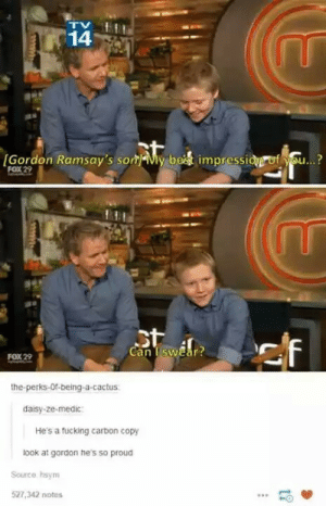 Fucking, Gordon Ramsay, and Best: 14  Gordon Ramsay's son y best impresside uf you...?  FOX22  Can I swar?  FOX 29  the-perks-0f-being-a-cactus  daisy-ze-medic  He's a fucking carbon copy  look at gordon he's so proud  Source hsym  527,342 notes  -O Another Gordon Ramsay post