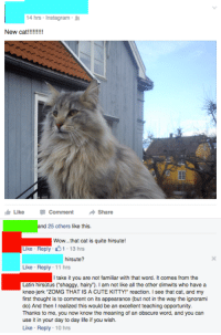 """Cute, Instagram, and Life: 14 hrs Instagram  1 Like Comment -Share  nd 25 others like this.  Wow...that cat is quite hirsute!  Like Reply 1.13 hrs  hirsute?  Like Reply 11 hrs  I take it you are not familiar with that word. It comes from the  Latin hirsütus (""""shaggy, hairy""""). I am not like all the other dimwits who have a  knee-jerk """"ZOMG THAT IS A CUTE KITTY!"""" reaction. I see that cat, and my  first thought is to comment on its appearance (but not in the way the ignorami  do) And then I realized this would be an excellent teaching opportunity.  Thanks to me, you now know the meaning of an obscure word, and you can  use it in your day to day life if you wish.  Like Reply 10 hrs <p><a class=""""tumblr_blog"""" href=""""http://whittneydoll.tumblr.com/post/136214099652"""">whittneydoll</a>:</p> <blockquote> <p><a class=""""tumblr_blog"""" href=""""http://justneckbeardthings.tumblr.com/post/136155018069"""">justneckbeardthings</a>:</p> <blockquote> <p>>ignorami</p> </blockquote> <p>end people like this</p> </blockquote>"""