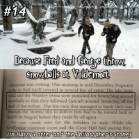 Gryffindor, Memes, and Twins:  #14  red and tear throw.  Voldemort  Christmas was coming. One morning in mid-December, Hogwarts  woke to find itself covered in several feet of snow. The lake froze  solid and the Weasley twins were punished for bewitching several  snowballs so that they followed Quirrell around, bouncing off the  back of his turban. The few owls that managed to battle their way  through the stormy sky to  deliver post had to be nursed back to  health by Hagrid before they could fly off again  No one could wait for the holidays to start. While the  Gryffindor common room and the Great Hall had roaring fires  (in Harry Potter and the Philosopher's Stone) 50reasonstoreadharrypotter ( and not just watch the movies) comment any ideas below! Tag a friend! harrypotter potterhead