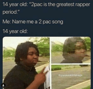 "Dank, Memes, and Period: 14 year old: ""2pac is the greatest rapper  period.""  Me: Name me a 2 pac song  14 year old  @grandwizardchatnigga 14 year old rap fans who were born in the wrong generation are the worst by fizzle-kicks MORE MEMES"