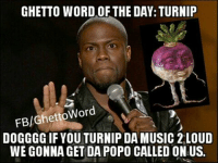 Ghetto Word of the Day: Turnip ~like/share/comment~: GHETTO WORD OF THE DAY: TURNIP  FB/Ghetto Word  DOGGGG IF YOU TURNIP DA MUSIC 2 LOUD  WE GONNA GET DA POPO CALLED ON US. Ghetto Word of the Day: Turnip ~like/share/comment~