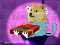 This is the fourth Doge meme I made smile emoticon I hope you like it smile emoticon: WOW  such toilet  SO O  chodlate This is the fourth Doge meme I made smile emoticon I hope you like it smile emoticon