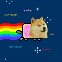 Fifth time smile emoticon: nyandoge  such rainbow  such nyan cat  WOW  So space Fifth time smile emoticon