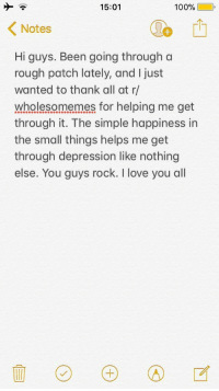 Anaconda, Love, and I Love You: 15:01  100%(10,  Notes  Hi guys. Been going through a  rough patch lately, and I just  wanted to thank all at r/  wholesomemes for helping me get  through it. The simple happiness in  the small things helps me get  through depression like nothing  else. You guys rock. I love you all <p>Thank you all</p>